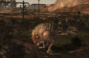 Fallen Earth Chicken Picture