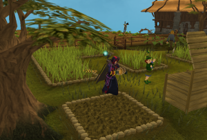 Placing supercompost on a herb patch
