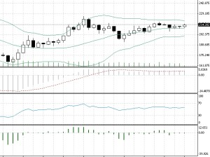 btc usd 167,125 low close now showing some bullish movement